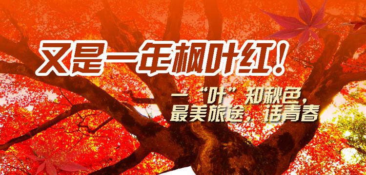 中国国旅-2019日本赏枫旅行